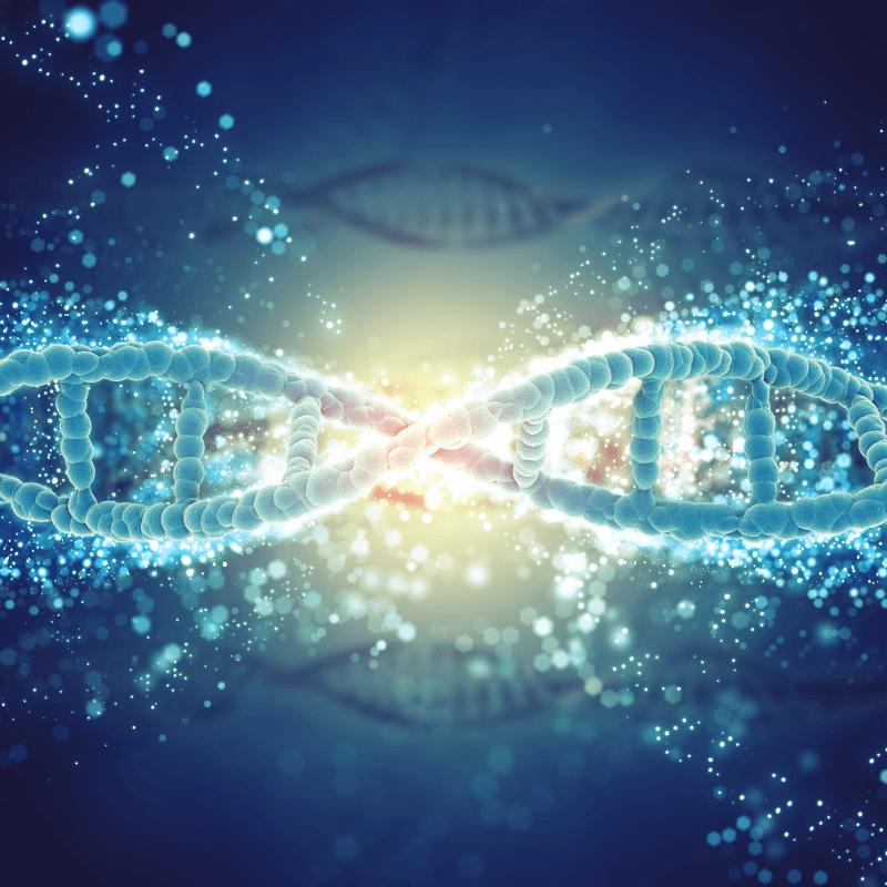 metagenómica gram positivo