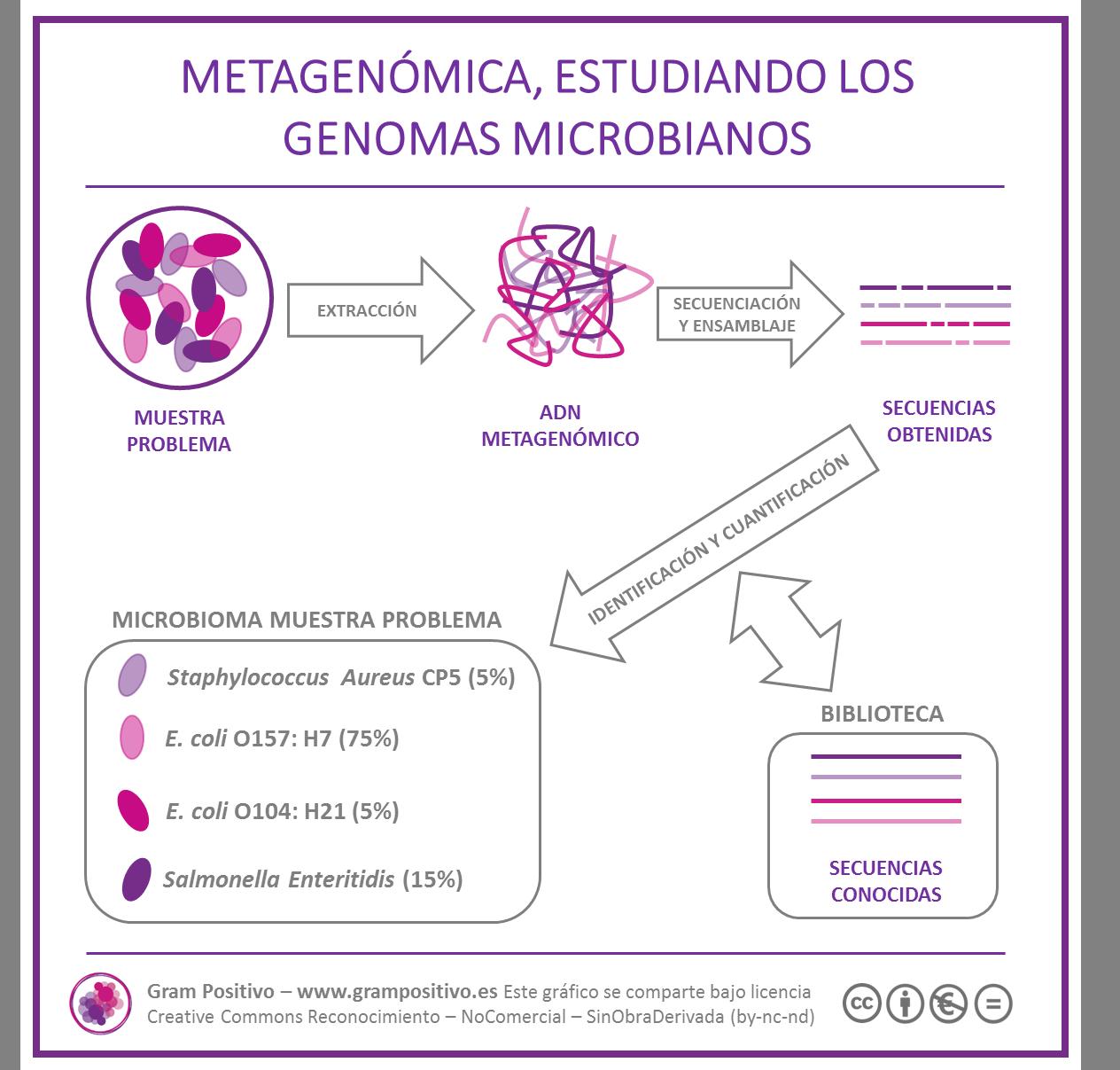 Resultado de imagen de Metagenómica
